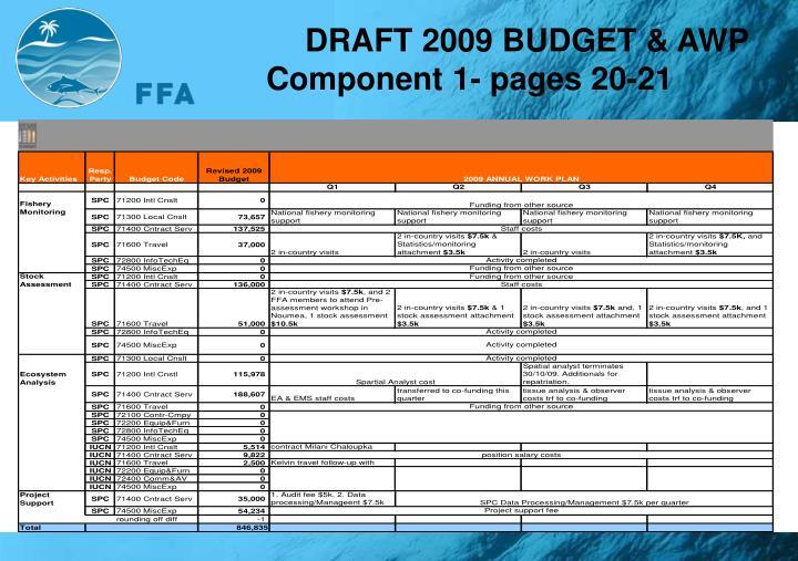 DRAFT 2009 BUDGET & AWP