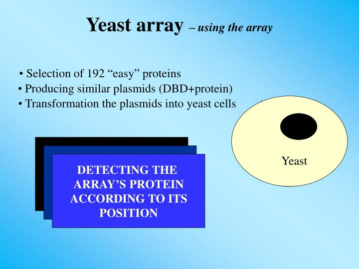 Producing similar plasmids (DBD+protein)