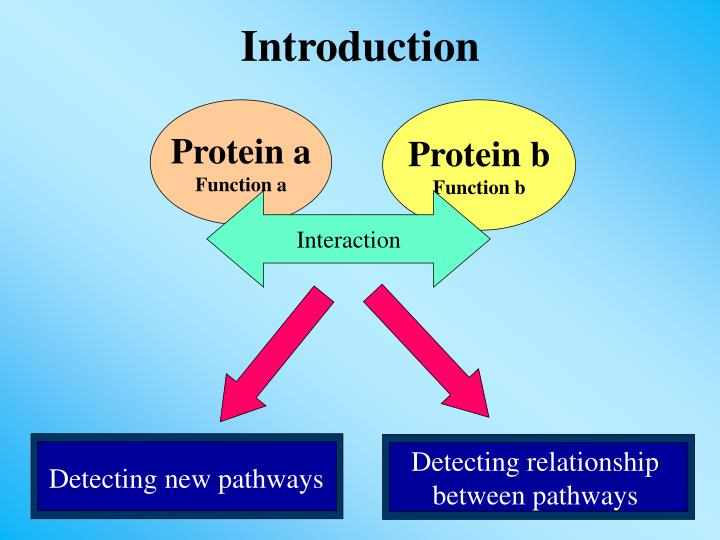 Detecting relationship between pathways