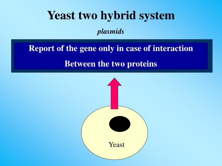 Report of the gene only in case of interaction