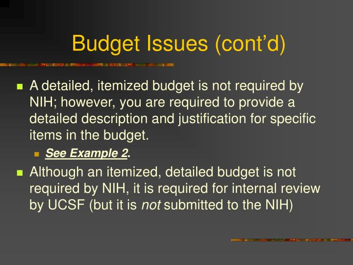 Budget Issues (cont'd)