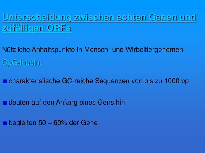 Unterscheidung zwischen echten Genen und zufälligen ORFs
