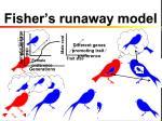 fisher s runaway model
