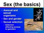 sex the basics