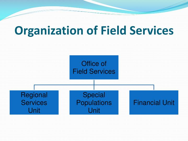 Organization of Field Services