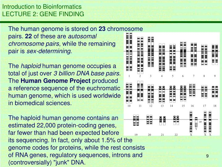 The human genome is stored on