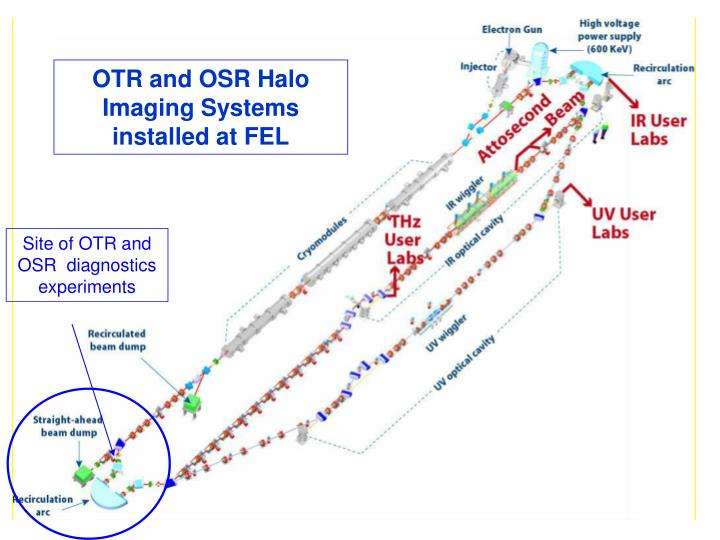 OTR and OSR Halo Imaging Systems installed at FEL