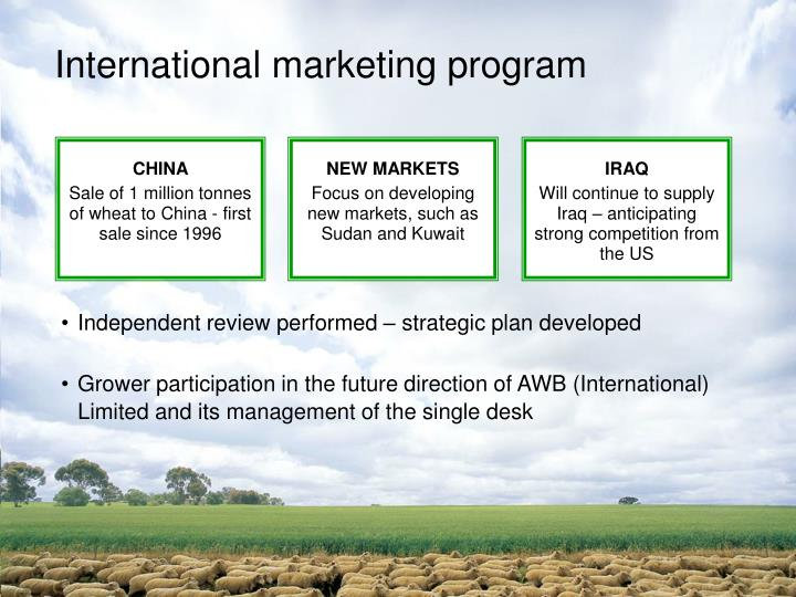 International marketing program