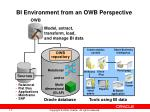 bi environment from an owb perspective