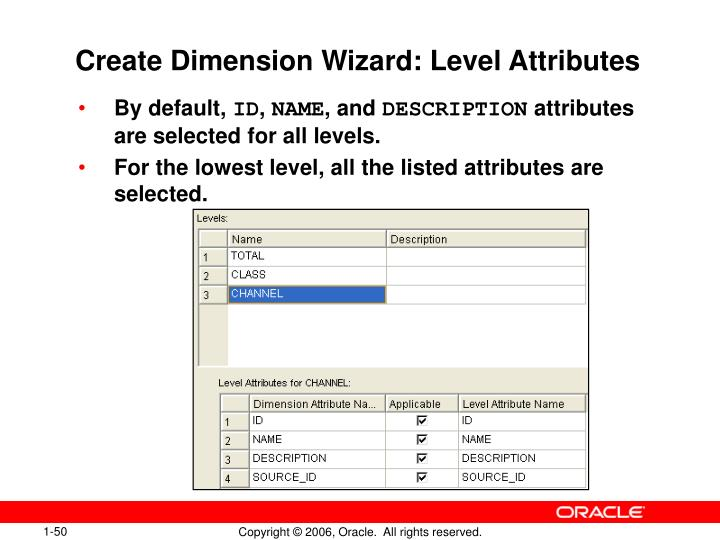 Create Dimension Wizard: Level Attributes