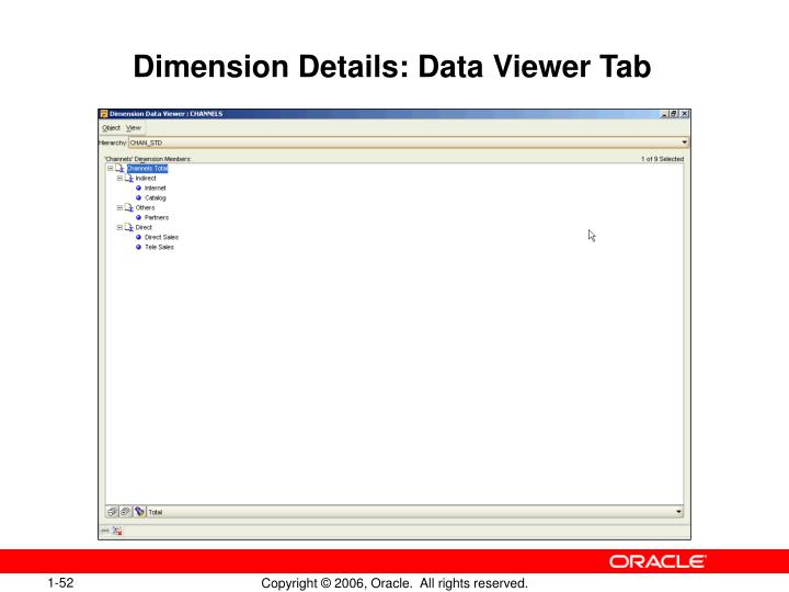 Dimension Details: Data Viewer Tab