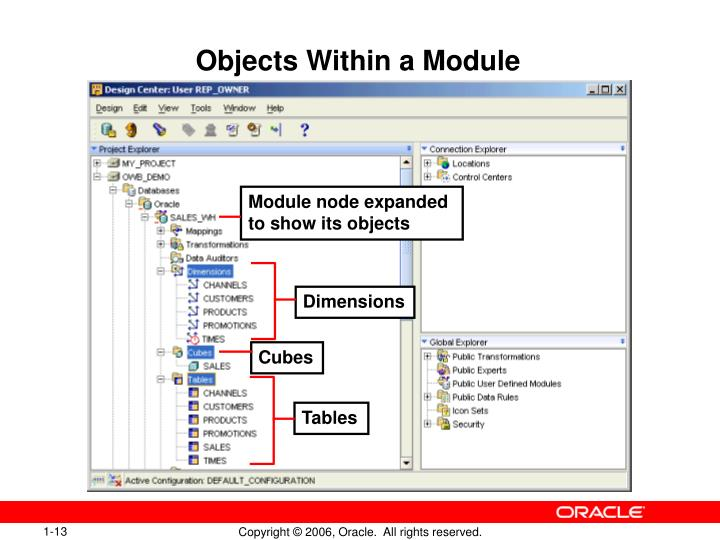 Objects Within a Module
