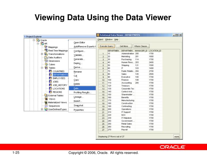 Viewing Data Using the Data Viewer