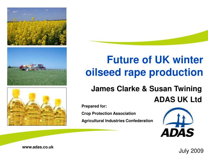 Future of UK winter oilseed rape production