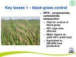 key losses 1 black grass control