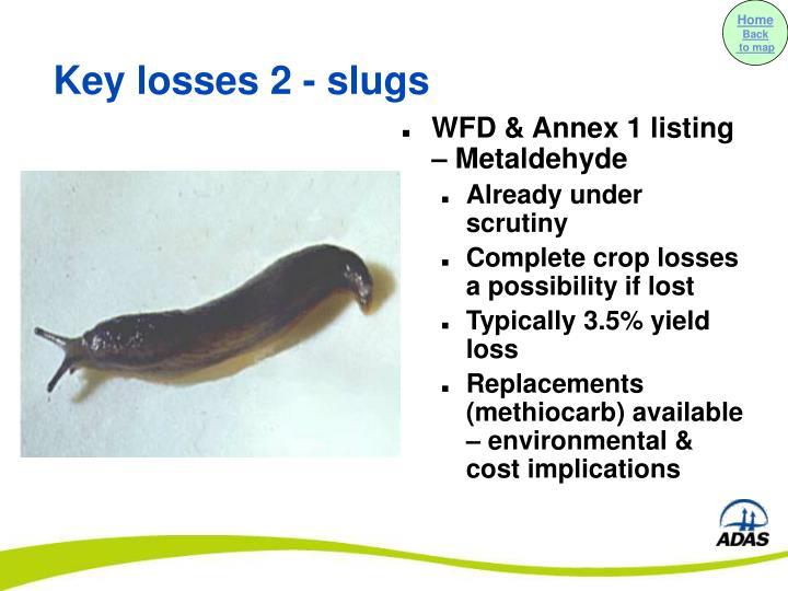 WFD & Annex 1 listing – Metaldehyde