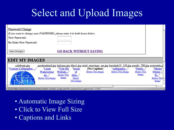 Select and Upload Images
