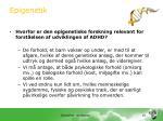 epigenetik4
