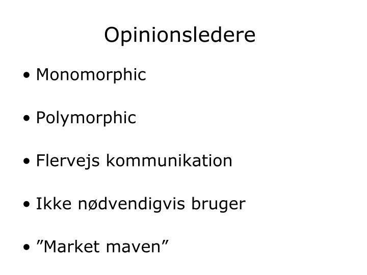 Opinionsledere