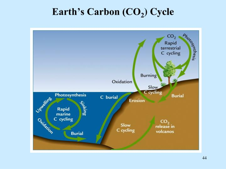 Earth's Carbon (CO