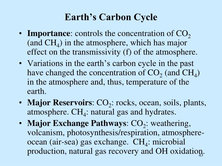 Earth's Carbon Cycle