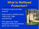 what is wellhead protection