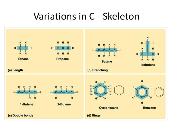 Variations in C - Skeleton