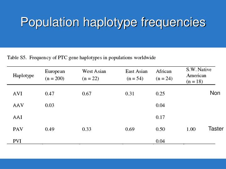 Population haplotype frequencies