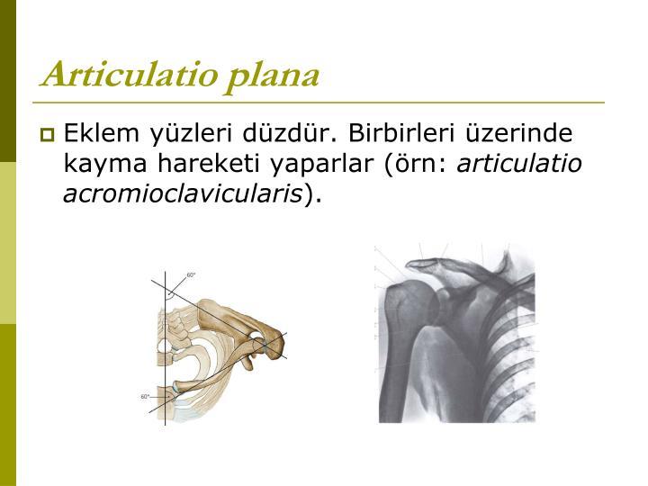 Articulatio plana