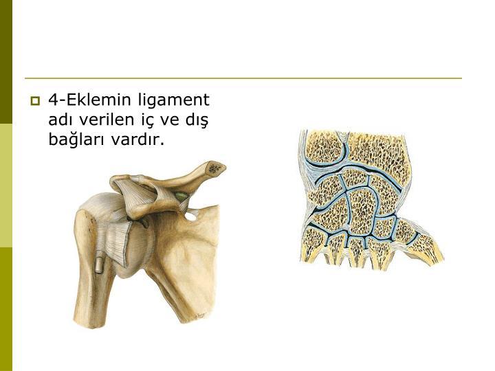 4-Eklemin ligament adı verilen iç ve dış bağları vardır.