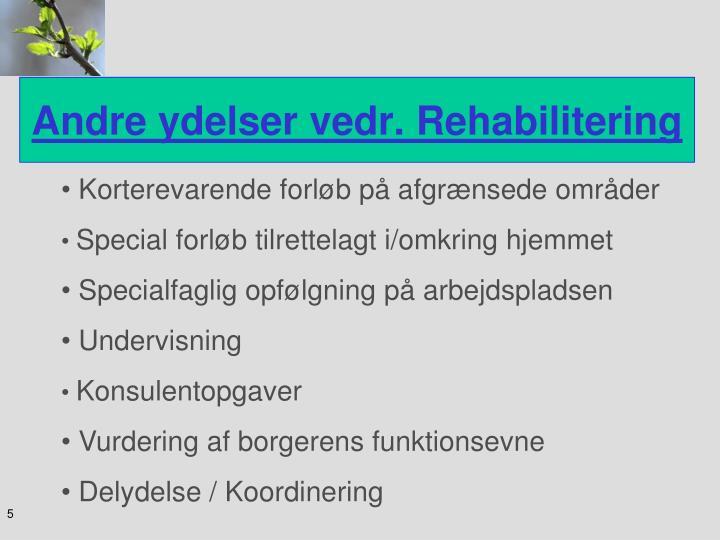 Andre ydelser vedr. Rehabilitering