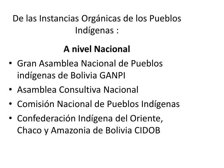 De las Instancias Orgánicas de los Pueblos Indígenas :