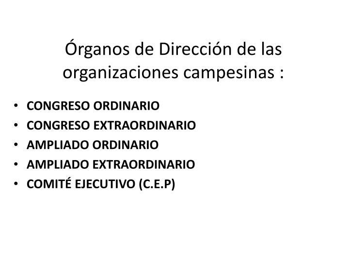 Órganos de Dirección de las organizaciones campesinas :