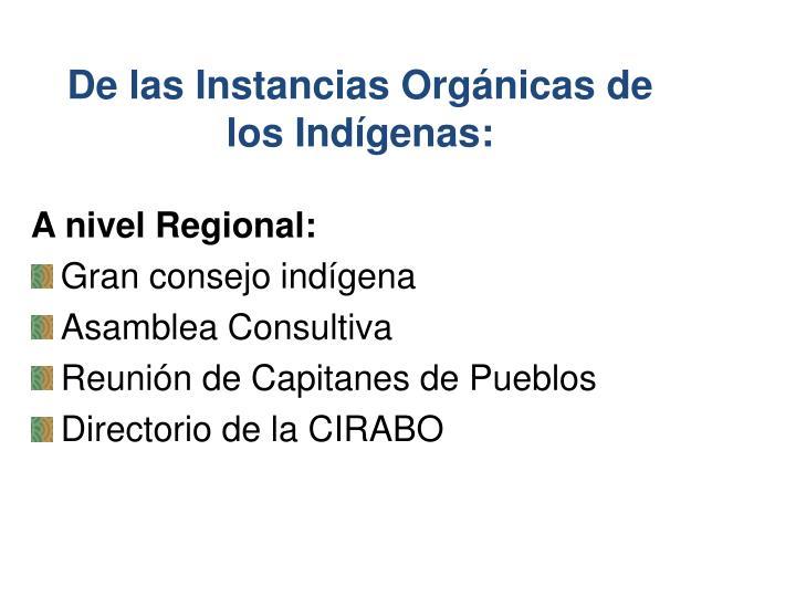 De las Instancias Orgánicas de los Indígenas: