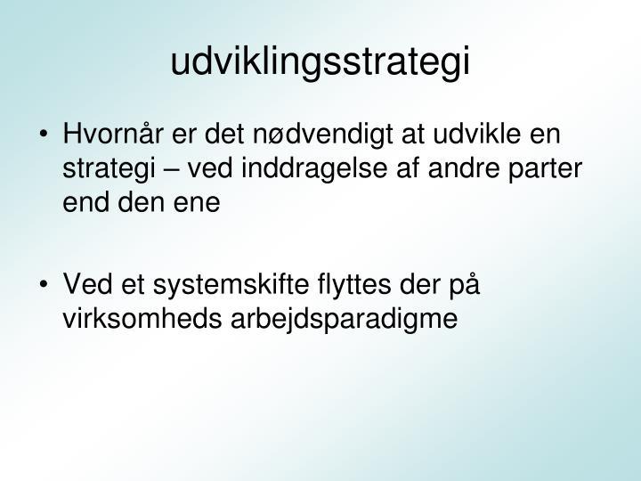 udviklingsstrategi