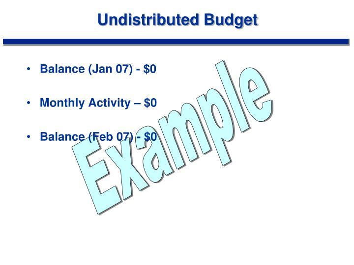 Undistributed Budget