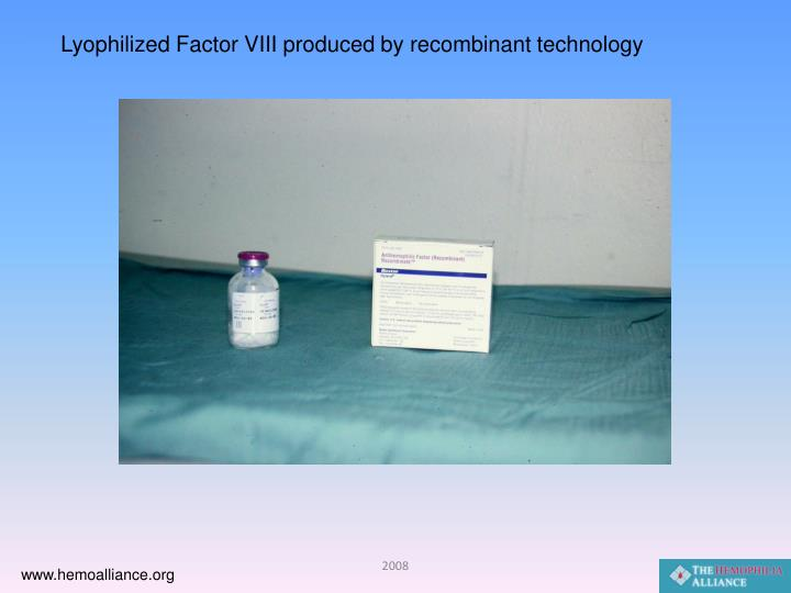 Lyophilized Factor VIII produced by recombinant technology