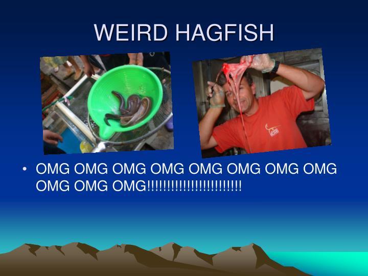 WEIRD HAGFISH