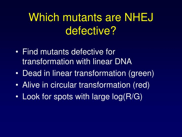 Which mutants are NHEJ defective?