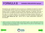 formula b1