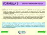 formula b2