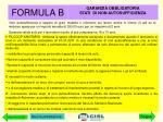 formula b4