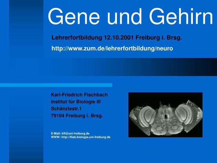 Gene und Gehirn