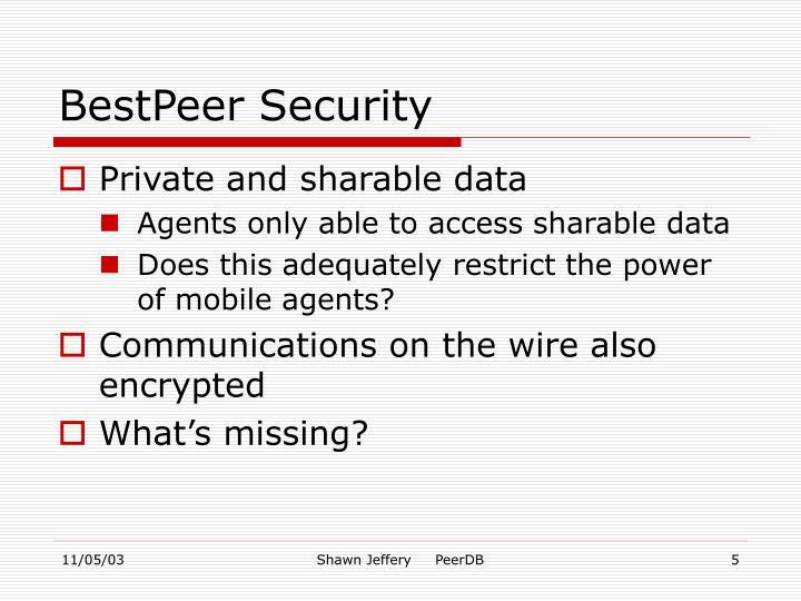 BestPeer Security