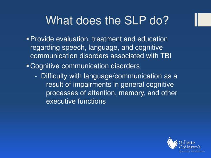 What does the SLP do?