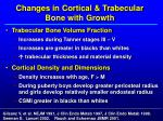 changes in cortical trabecular bone with growth