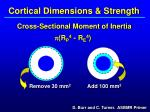 cortical dimensions strength