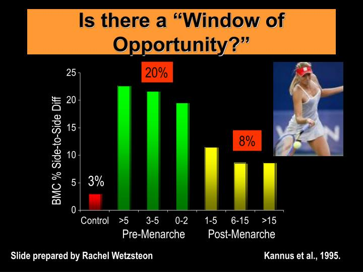 """Is there a """"Window of Opportunity?"""""""