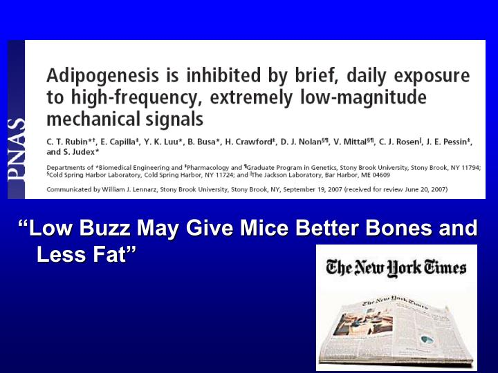 """""""Low Buzz May Give Mice Better Bones and Less Fat"""""""