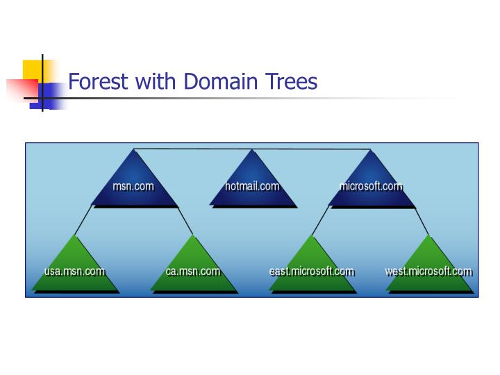 Forest with Domain Trees